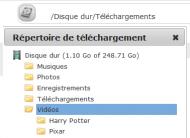 repertoire-de-telechargement-de-la-seedbox-server.png
