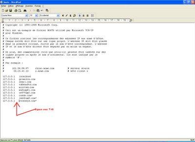 une-fois-termine-votre-fichier-hosts-doit-etre-comme-ceci.png