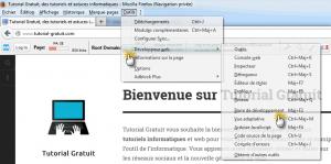Dans le menu « Outils », cliquez sur « Développeur web » et ensuite « Barre de développement »