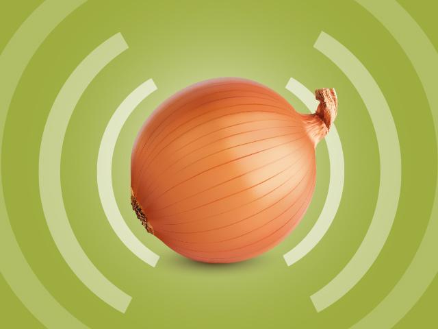 Comment Tor permet-il l'anonymat ? Qui a besoin de Tor ? Tor et Bitcoin