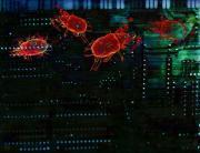 Explications pour supprimer virus vanilla reload et les virus parasites de votre ordinateur