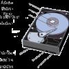 le-disque-dur-est-l-organe-de-l-ordinateur-servant-a-conserver-les-donnees.png