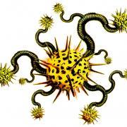 Supprimer slimcleaner plus adware virus